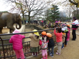 人気者ゾウの姫子のいるゾウ舎は人がいっぱい