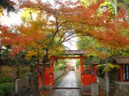 本殿へ続く参道では美しい紅葉も見られる