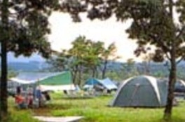 キャンプ アフリカン サファリ