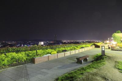 紀ノ川SA(下り線)