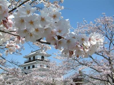 白石城桜まつり