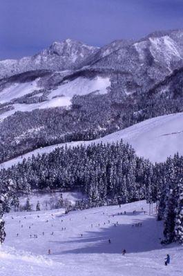 スキー場周辺一帯は秘境的ムードが漂う