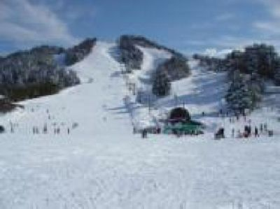 場 兵庫 県 スキー