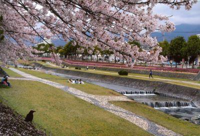 神奈川県の公園【駐車場あり】(4...