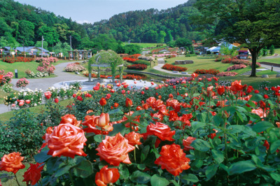 東沢公園(東沢バラ公園)(山形県...