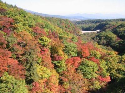 八幡平(松川温泉)の紅葉
