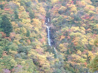 蛇王の滝の紅葉