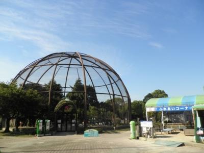 久留米市鳥類センター(福岡県・...