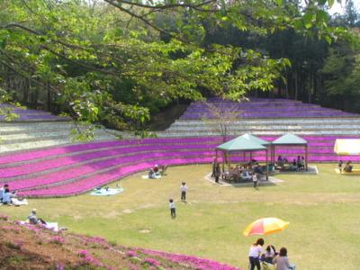 公園 笠間 芸術の森