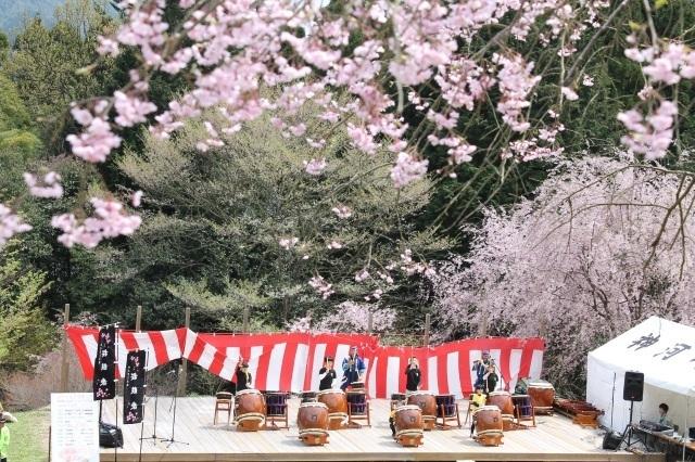 桜華園さくらまつり