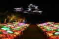 光のおもてなしin松山城2017