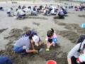ふれあいのかおり2017~渚のフェスティバル~