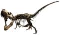 ヨコハマ恐竜展2017~動く!ほえる!恐竜の森~