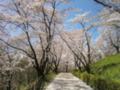 大法師公園