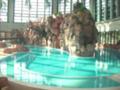 鶴見緑地プール